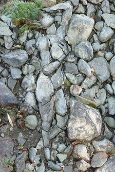 Stone...can you see me?