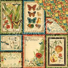 Graphic 45 Nature Sketchbook Double-Sided Cardstock 12 inch X12 inch - Beautiful World