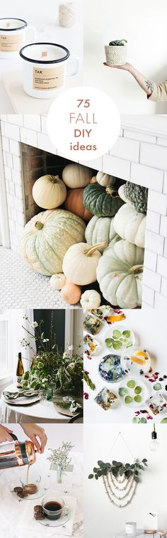 It's time for pumpkins, sweaters, and all the cozy fall DIY projects you can handle! Get creative this fall with ideas to celebrate the season.