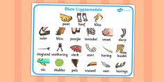 Afrikaans animal bodypart word mat Animal Body Parts, Future Jobs, School Posters, Afrikaans, Worksheets For Kids, Speech And Language, Verses, Homeschool, Classroom