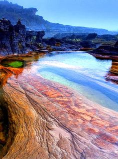 kyoukoknknkn shared a photo from Flipboard Monte Roraima, Places To Travel, Places To Visit, Beauty Planet, Live Animals, Caribbean Sea, Belleza Natural, Continental, South America