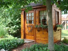 Mary Ann's small potting garden shed turned into her backyard she-shed escape! #cedarshed #smallcedarshed #smallsheshed