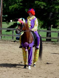Image detail for -Horses in Costumes | My Disguises - We Love Costumes