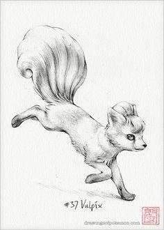 Vulpix  5 x 7 print pokemon drawing art by DrawingsofHeroes, $9.00