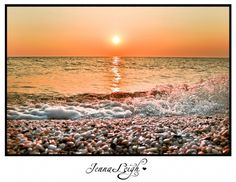 Cape May While Most New Jersey Beaches Consist Of Tered Shells In Hot Sand One Can Find A Treasure Amidst The Glowing Tides Diamond Beach