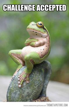Frog never refuses a challenge…