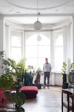 Cloud 7: Strictly For Modern Dogs | http://www.yatzer.com/cloud7-strictly-for-modern-dogs