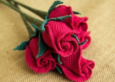 Happy Patty's Amazing Flowers - Talking Crochet Updates - September 22, 2015 - Vol. 12 No. 19