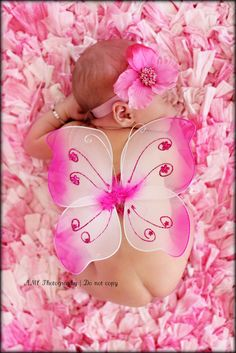 Pink butterfly <3
