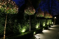 Delightful Find Out More About Our Richmond LED Garden Floodlight That Is Ideal For  Highlighting A Pathway Or Shrubs Creating A Soft Wash Of Light To Planting.