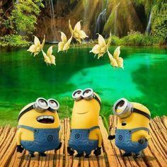 Minion Rock, Minion 2, Minions Despicable Me, Minion Party, Funny Minion, Image Minions, Minions Images, Minion Pictures, Minions Quotes