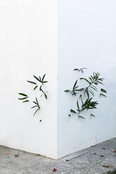 Conceptual photography by Octavi Serra