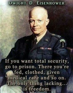 I an not willing to give my freedoms up, i seek my own protection not others to protect me