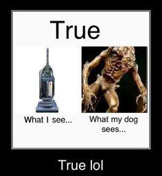 This is soooo true...