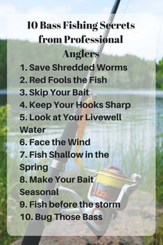 10 Bass Fishing Secrets from Professional Anglers