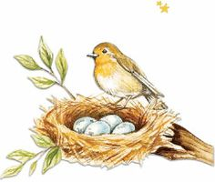 Gooseberry Patch artwork...sweet spring robin.