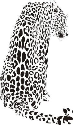 Dzikie koty 21 - lampart