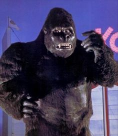 Kong, in an unusual moment of uncertainty