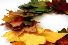 Fall Decorating Ideas for Your Home: Wreaths, Centerpieces, Color Palettes & More! Fall Home Decor, Autumn Home, Home Decor Trends, Autumn Fall, Fall Months, Autumn Garden, Go Green, Decorating Your Home, Fall Decorating