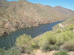 You will find great Phoenix, Arizona house rentals in the East Valley at reasonable prices. Roosevelt Lake, Arizona, Trail, River, Spaces, Outdoor, Outdoors, Outdoor Games, The Great Outdoors
