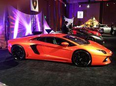 Looking sexy as always - Lamborghini #luxury sports cars #customized cars #ferrari vs lamborghini #celebritys sport cars #sport cars| sportcarsdedric.b...