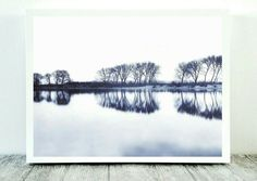 Tree Nature Print, Tree Reflection, Print Nature Tree, Art Printable Blue, Tree Photo Art, Instant Download, Digital Photography, Nature Art