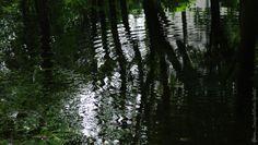 Majowo podwodnie... (06) Park A.Struga