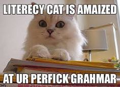 funny literacy pictures - Google Search