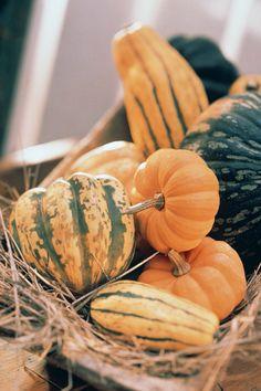 Alimentos que activan la melanina http://stylelovely.com/galeria/alimentos-activan-la-melanina/