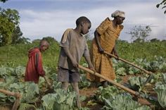 daily life in uganda photo - بحث Google