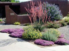 #drought #tolerant #xeriscape #garden #landscape #landscaping