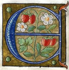 """""""E"""" letter -- Alphabet Book, by French Artist, Paris (France), [Walters Medieval Books, Medieval Manuscript, Medieval Art, Book Letters, Alphabet Book, Letter Art, Illuminated Letters, Illuminated Manuscript, French Alphabet"""