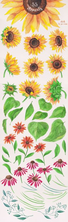 Watercolor Sunflowers by Stella's Graphic Supply on @creativemarket