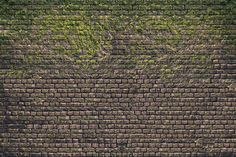 Brick Wall with Moss - Fototapeten & Tapeten - Photowall