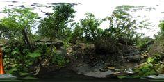 [擴增實境]虛擬實境的想像 (九):高德祥老師及楊昌珣老師分享之VR與教學的結合 Plants, Blog, Blogging, Plant, Planets