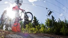 Try ziplining, biking and more as a Norway #DreamJobber #NorwayDreamJobs photo: oslosommerpark.no