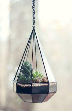 多肉植物がピラミッド型の鉢に入れられて神秘的に演出されています。  吊り下げることでいろいろな角度からの眺めを楽しむことができますね。