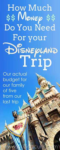 How much money should I bring to Disneyland? | Disneyland buget tips | cash | planning | hotel | tickets | souveniers | planner | money