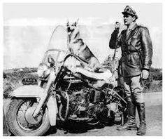 Vigilante Rodoviário, Inspetor Carlos Miranda e seu cão Lobo