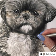 See this Instagram photo by @topcoloridos • 19 likes