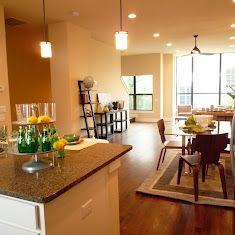 Contemporary townhome in downtown Fort Worth TX