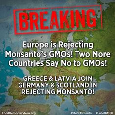 But NOT in the USA!   Too much $$ to lose if Monsanto actually cared about the safety of the foods they would have us consume....