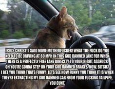 Some road rage in action!!