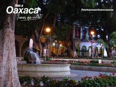 Les deseamos un excelente inicio de semana desde el Zócalo de la ciudad de #Oaxaca.  #SemanaSantaEnOaxaca ¡Tienes que vivirlo!