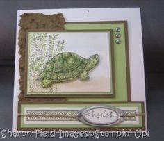 turtle card / scrapbook