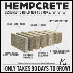 This is Amazing. if Big Brother would stop throwing people in jail for hemp(m. - This is Amazing…. if Big Brother would stop throwing people in jail for hemp(marijuana) & actuall - Natural Building, Green Building, Building A House, Building Ideas, Building Systems, Water Energy, Save Our Earth, Earthship, Hemp Oil