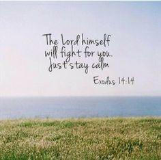 Exodus 14:14