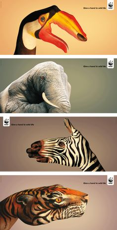 Just a beautiful ad campaign... from concept to execution.    Public Service Campaig:  Give a Hand to Wild Life (2008), by Saatchi & Saatchi Simko agency in Geneva, is a series of clever and beautiful photographs of human hands camouflaged as wild animals by bodypainter Guido Daniele.
