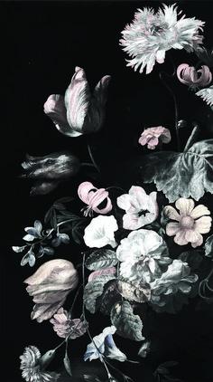 Dark Floral Mural // Still Life Flowers - Rachel Ruysch