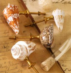DIY project?  Hot glue or small screws hold real  varnished found shells as drawer pulls or cabinet knobs...I like.....